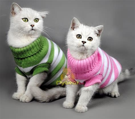 cat sweaters for cats aliexpress com buy stripe color warm winter