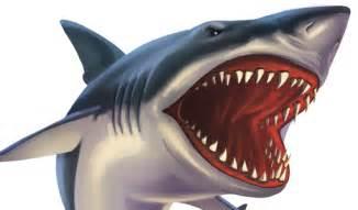 Shark Attack Clip Art