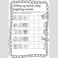 Cvc Worksheets Eg Words Teacha