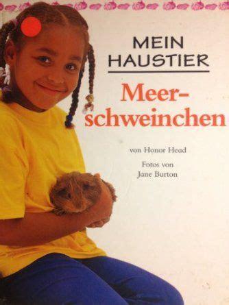 Mein Kfy Chair Book by Die Besten 17 Ideen Zu Meerschweinchen Spielzeug Auf