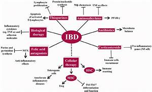 Current And Emerging Therapies For Inflammatory Bowel Disease  Ibd