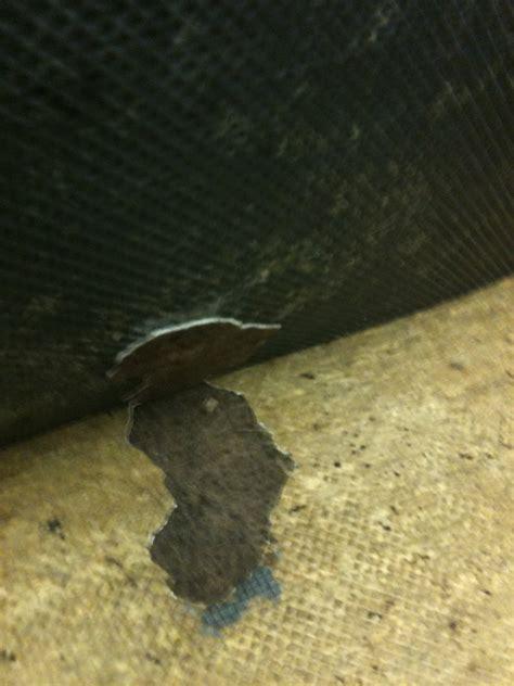 laying tile linoleum backing removing carpet from lino flooring possible asbestos