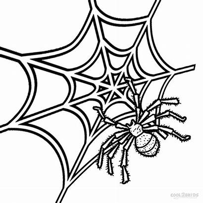 Spider Coloring Web Printable Pages Drawing Spiders
