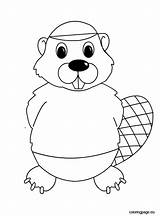 Beaver Coloring Beavers Pages Clipart Face Sheets Printable Template Oregon Colouring State Sheet Angry Sports Wood Webstockreview Getdrawings sketch template