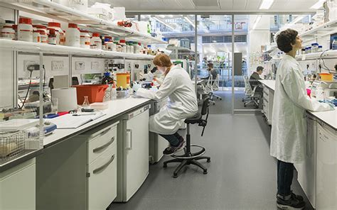 open floor plan design francis crick institute named 2017 laboratory of the year
