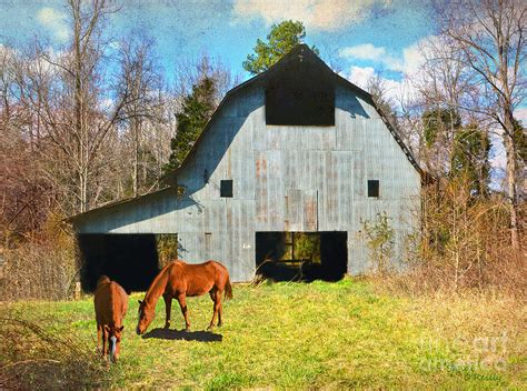barn horses sandi oreilly call photograph 29th which uploaded