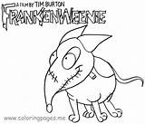 Coloring Pages Frankenweenie Sparky sketch template