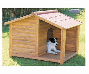 Casas para perros Cocoyoc Bienes Raices