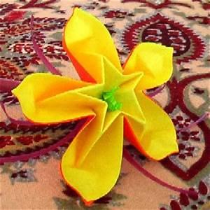 Origami Fleur Coeur D étoile : vid o fleur coeur d 39 etoile association masi ~ Melissatoandfro.com Idées de Décoration