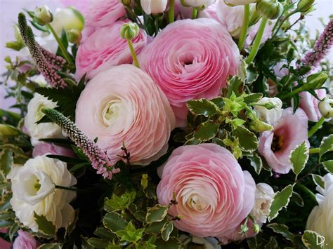fiori per battesimo fiori per battesimo fiori bianchi e rosa ranuncoli
