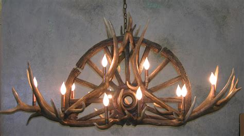deer antler ls deer antler chandelier for mule deer real