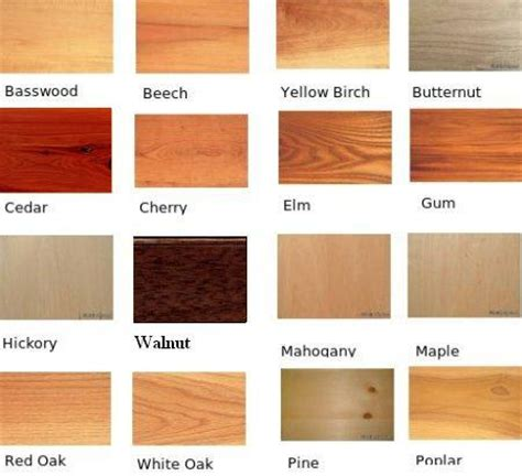 Natural Wood Colors  Google Search  Wood Projects