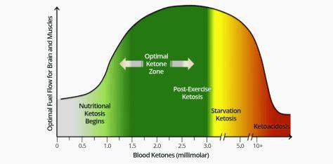 optimal ketone  blood sugar levels  ketosis