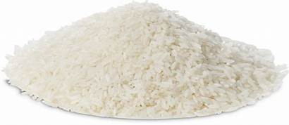 Rice Clipart Transparent Boiled Pngall Arroz Grain