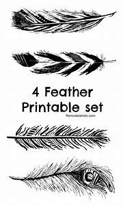 Free Printable Feathers Prints
