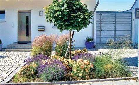 Lavendel Und Gräser by Pflegeleichter Garten Garten Lavendel Pflegeleichter