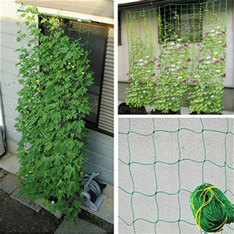 Climbing Plant Nylon Supporting Netting Garden Vegetable