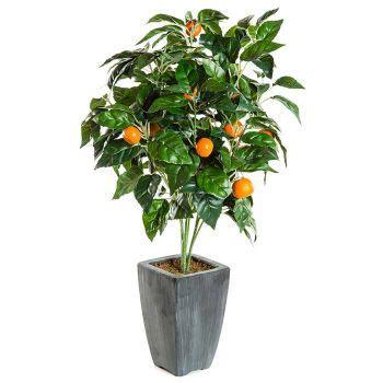 pot pour arbre fruitier pot pour arbre fruitier 28 images arbre artificiel fruitier oranger t 234 te en pot int 233
