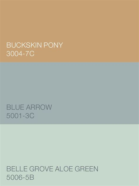 from the valspar comfort zone palette buckskin pony 3004