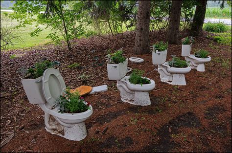 toilets   flower planters   front yard