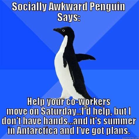 Socially Awkward Penguin Memes - mike carballa s funny quickmeme meme collection