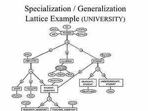 Er Diagram Of College Admission Process Department
