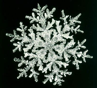 what happened on january 28th the largest snowflake ever recorded if i only had a time machine