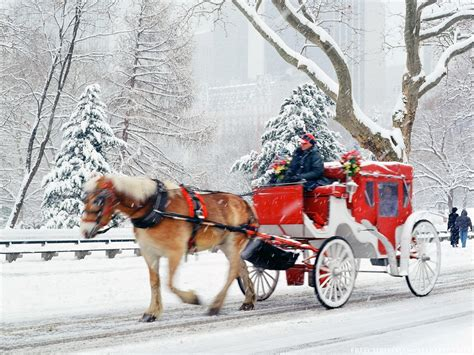 christmas in central park back drops for santa pics fairytale in new york georgina and co