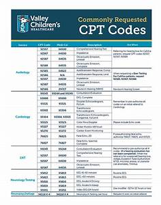 Cpt Code Guide