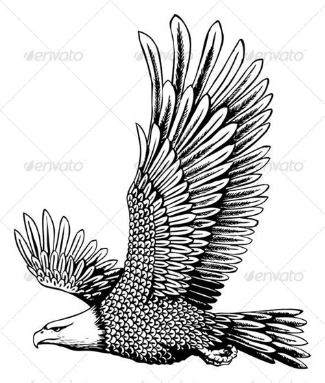 bald eagle template 1000 images about zentangle animals on pinterest