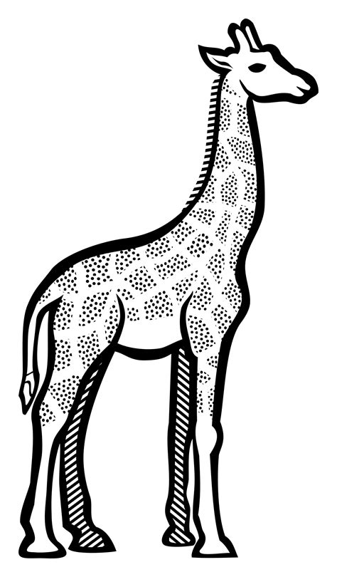 Pikpng encourages users to upload free artworks without copyright. giraffe clipart black and white outline png - Clipground