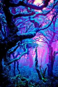trees nature colorful fairy fairy tale neon trees faerie