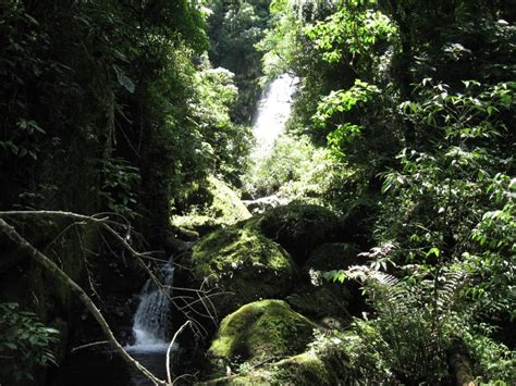 Área de Proteção Ambiental de Caraá - Sema - Secretaria do ...