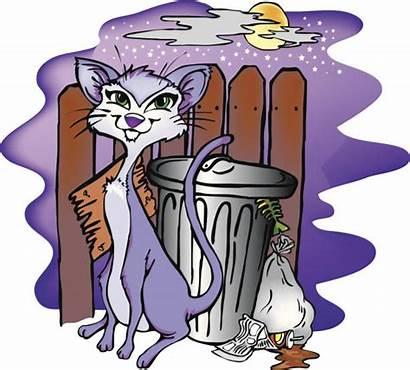 Stray Cat Alley Animal Vector Clip Illustrations