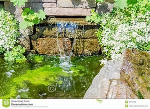 Gartenteich Mit Wasserfall : wasserfall gartenteich stockbild bild von wasserfall 43112155 ~ A.2002-acura-tl-radio.info Haus und Dekorationen