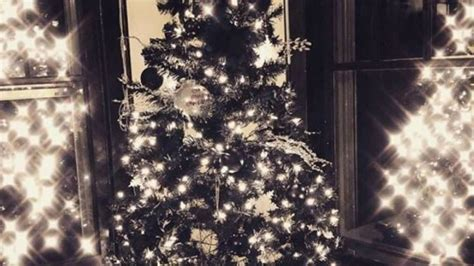 Black Christmas Trees Become Hottest New Holiday Trend This Season  Fox News