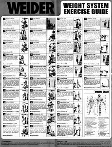 Weider Pro 6900 Exercise Chart