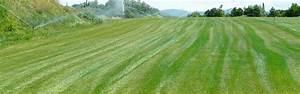 Ou Trouver De La Terre Végétale : prix de la terre v g tale emport e par camion ou remorque ~ Premium-room.com Idées de Décoration