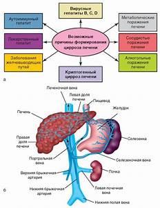 Шифр мкб 10 артериальная гипертония