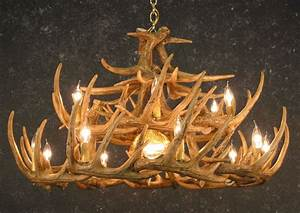 Whitetail antler chandelier w downlight sale
