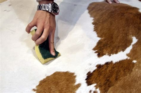 How To Clean Cowhide by How To Clean Your Cowhide Tapis Essgo Carpets