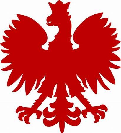 Polish Falcon Clip Clipart Dark Eagle Clker