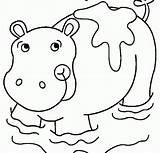 Sujo Hippo Coloring Coloriage Sheets Desenho Hippopotame Colorir Druku Hipopotamo Imprimer Porco Tudodesenhos Printable Groźne sketch template