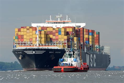 msc resumes operations at tianjin world maritime news