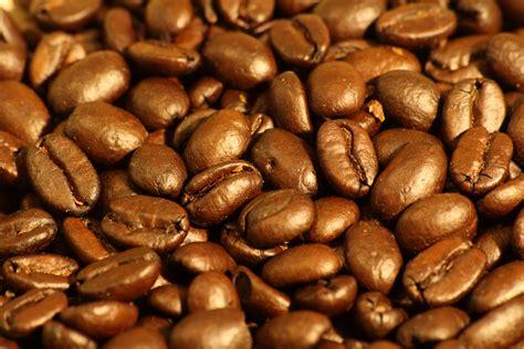 light roast coffee file roasted espresso blend coffee beans 1 jpg
