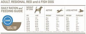 Orijen Whole Prey Dog Food