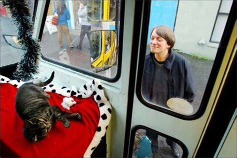 Cat-filled Bus Prowls The Town For