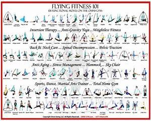 Yoga Pose Chart Poster Flying Fitness 101 Omni Gym Aerial Yoga Pose Poster