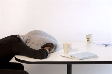 Micros Help Desk Nj by The Ostrich A Pillowy Sleep Cocoon For Your