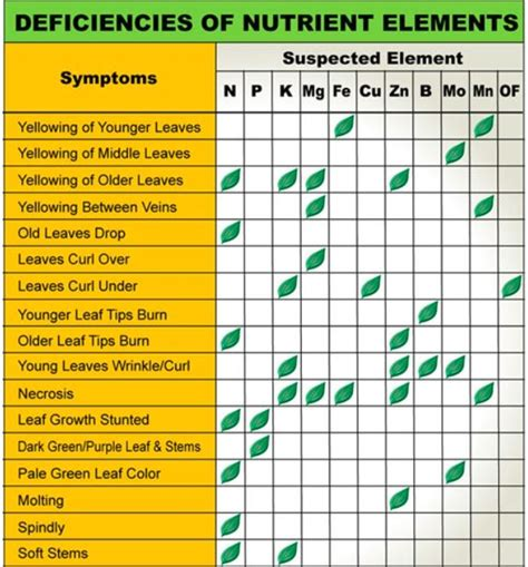 nitrogen deficiency images  pinterest growing vegetables organic gardening  plants